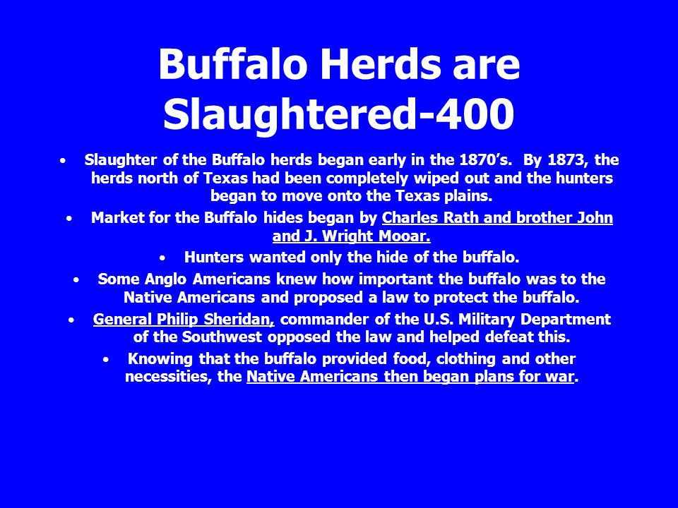 Buffalo Herds are Slaughtered-400 Slaughter of the Buffalo herds began early in the 1870's. By 1873, the herds north of Texas had been completely wipe