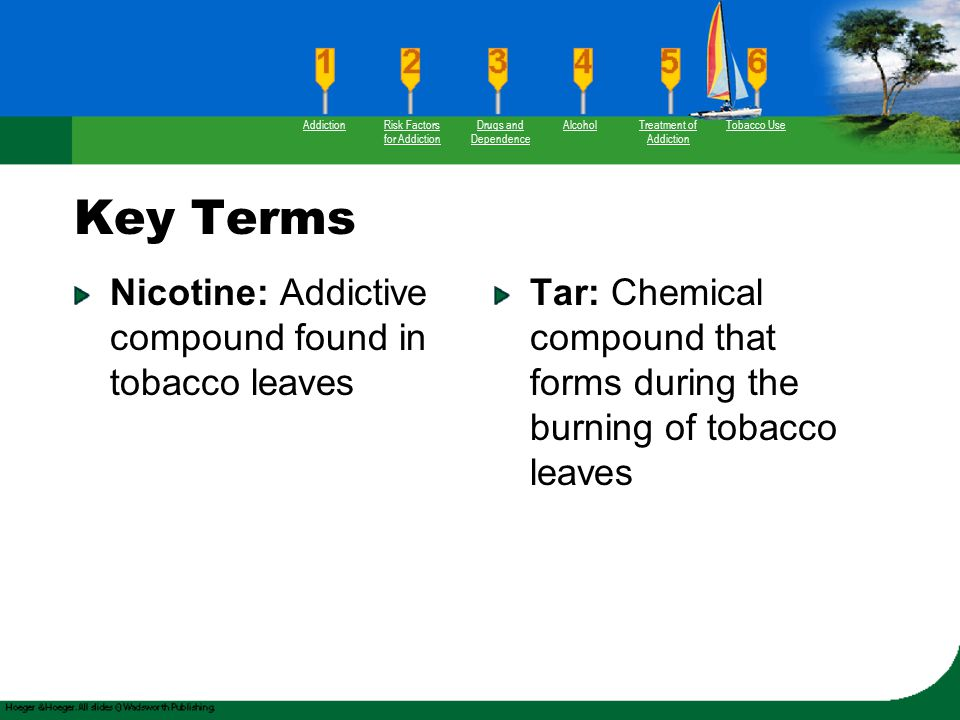 Key Terms Nicotine: Addictive compound found in tobacco leaves Tar: Chemical compound that forms during the burning of tobacco leaves AddictionRisk Fa
