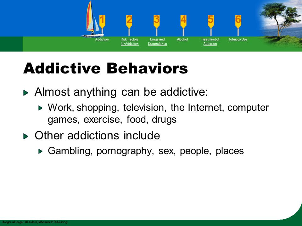 Addictive Behaviors Almost anything can be addictive: Work, shopping, television, the Internet, computer games, exercise, food, drugs Other addictions