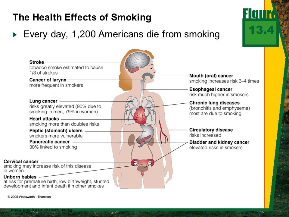 Every day, 1,200 Americans die from smoking 13.4 The Health Effects of Smoking