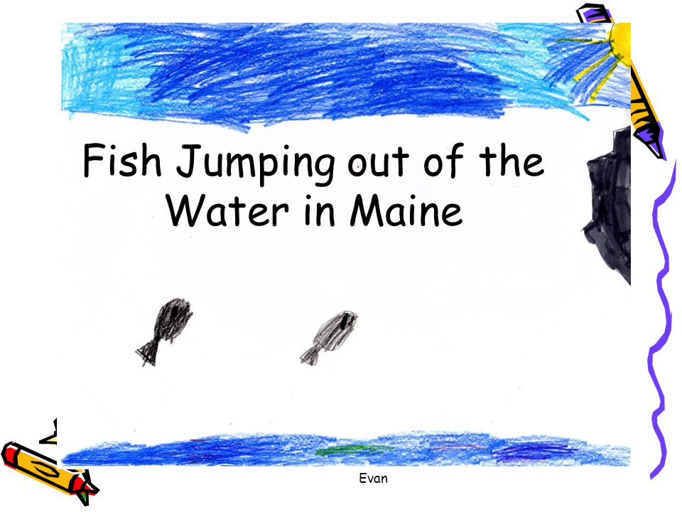 Evan Fish Jumping out of the Water in Maine