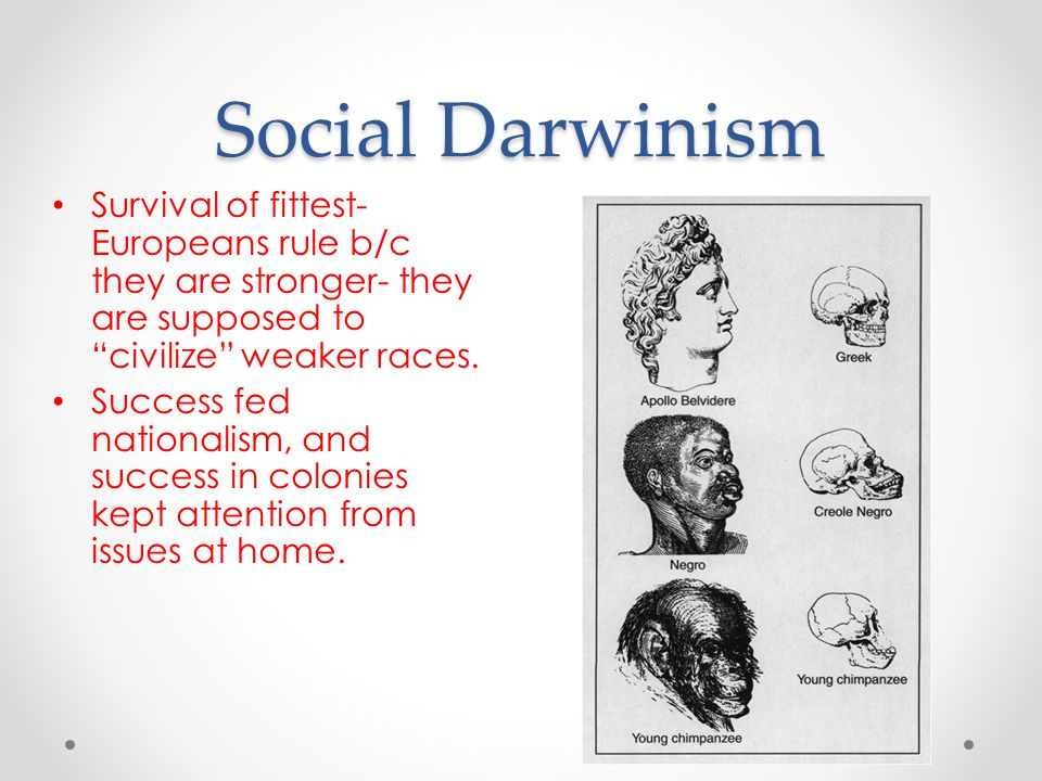 "Social Darwinism Survival of fittest- Europeans rule b/c they are stronger- they are supposed to ""civilize"" weaker races. Success fed nationalism, and"