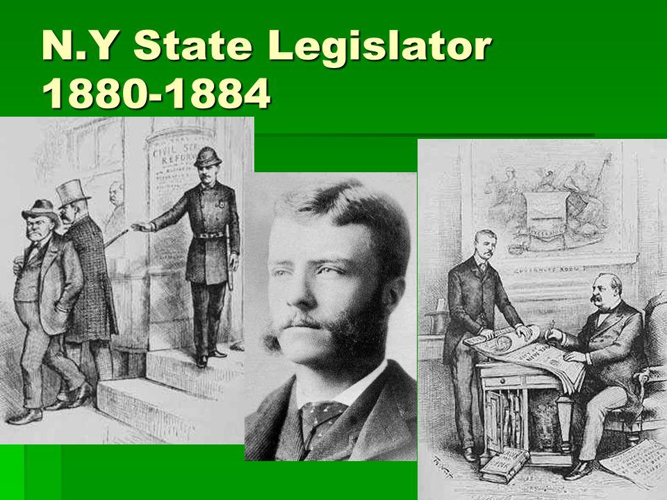 N.Y State Legislator 1880-1884