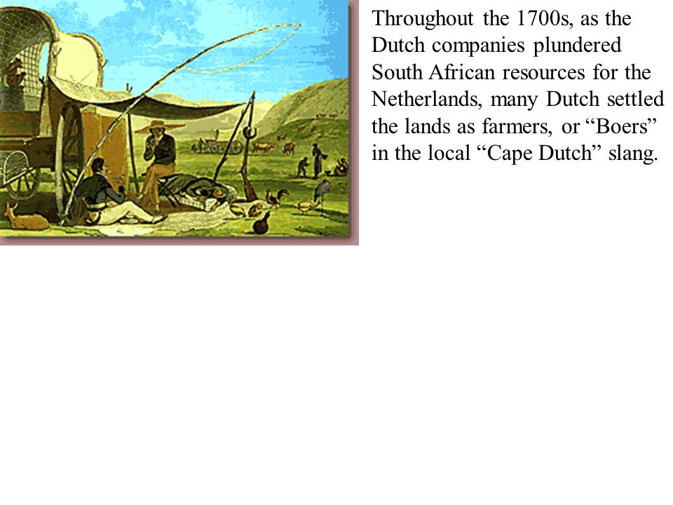 Throughout the 1700s, as the Dutch companies plundered South African resources for the Netherlands, many Dutch settled the lands as farmers, or Boers in the local Cape Dutch slang.