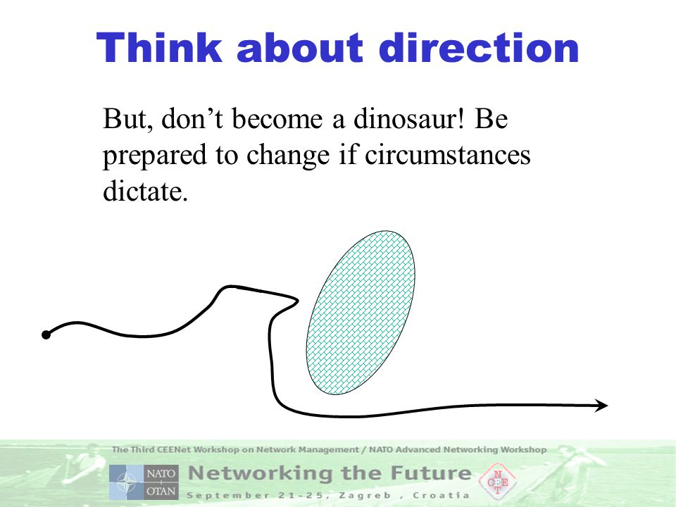 Think about direction But, don't become a dinosaur! Be prepared to change if circumstances dictate.
