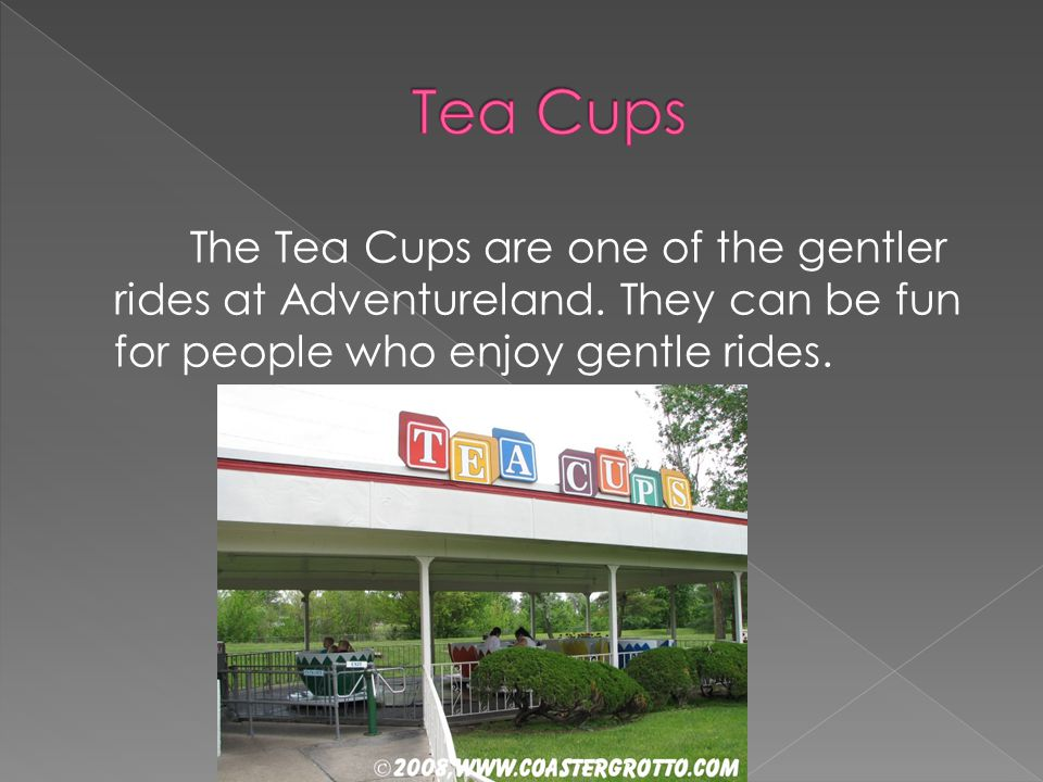 The Tea Cups are one of the gentler rides at Adventureland. They can be fun for people who enjoy gentle rides.