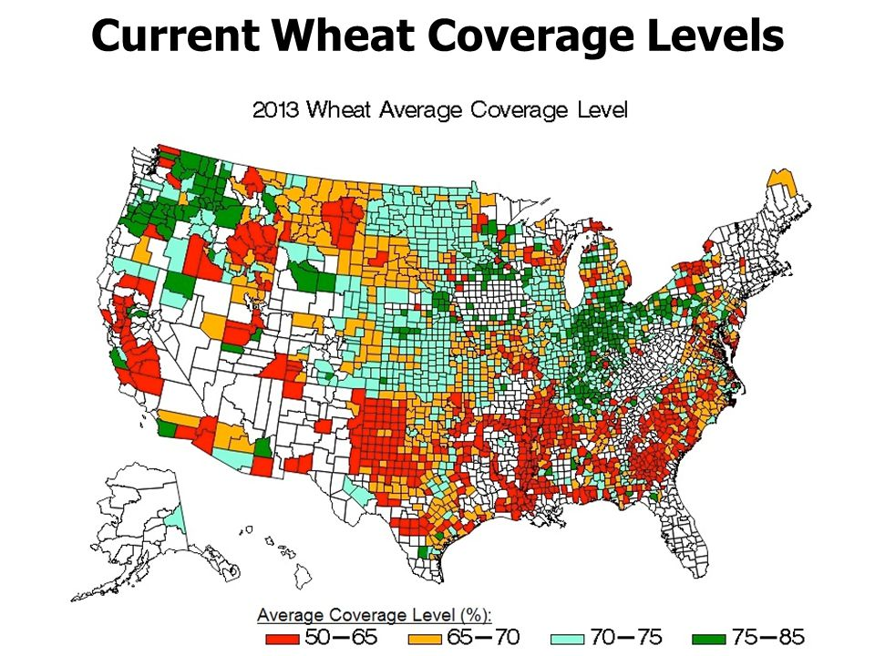 Current Wheat Coverage Levels