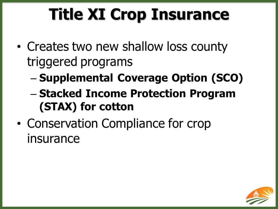 Traditional crop insurance changes – Separate coverage level by practice – Enterprise units by dryland/irrigated practice – Beginning farmers (provides 10 percentage point discount for all crop insurance premiums) – Authority to do peanut revenue insurance – Establishes fund to combat crop insurance fraud – Crop margin coverage & peanut revenue coverage Major Crop Insurance Changes