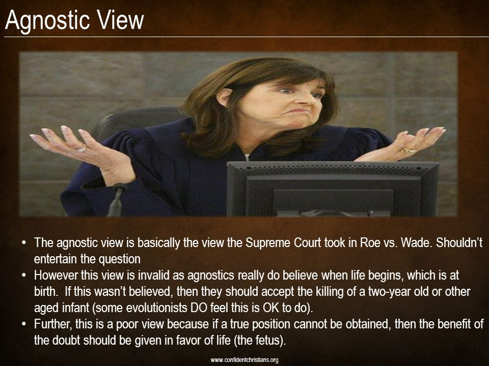 Agnostic View www.confidentchristians.org The agnostic view is basically the view the Supreme Court took in Roe vs.