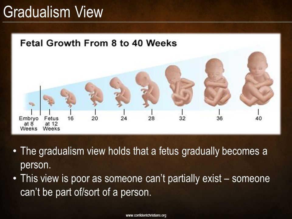 Gradualism View www.confidentchristians.org The gradualism view holds that a fetus gradually becomes a person.