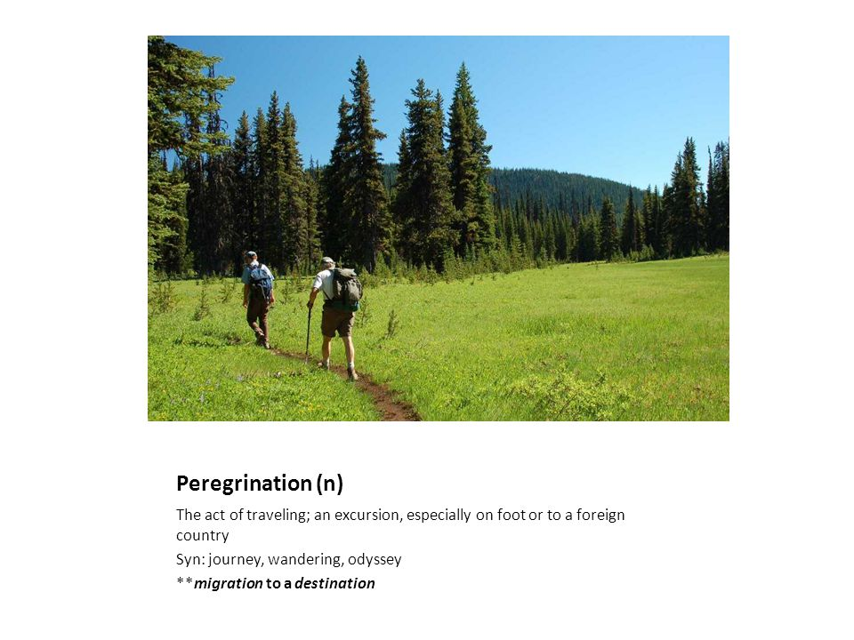 Peregrination (n) The act of traveling; an excursion, especially on foot or to a foreign country Syn: journey, wandering, odyssey **migration to a destination