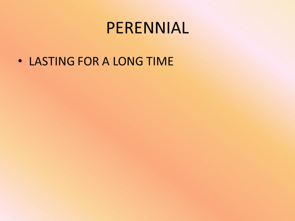 PERENNIAL LASTING FOR A LONG TIME