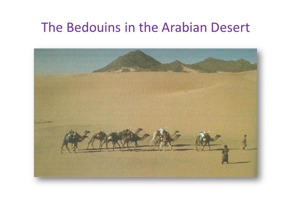 The Bedouins in the Arabian Desert