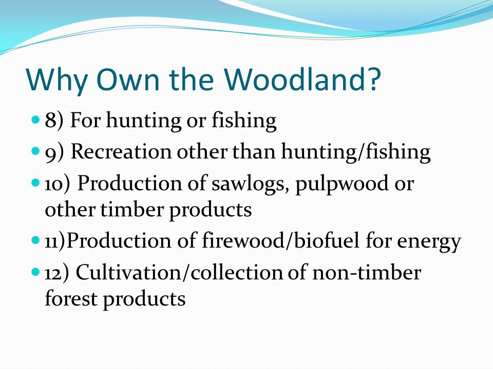 Why Own the Woodland.