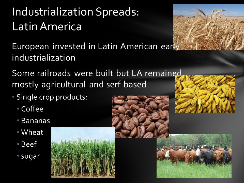 European invested in Latin American early industrialization Some railroads were built but LA remained mostly agricultural and serf based Single crop p
