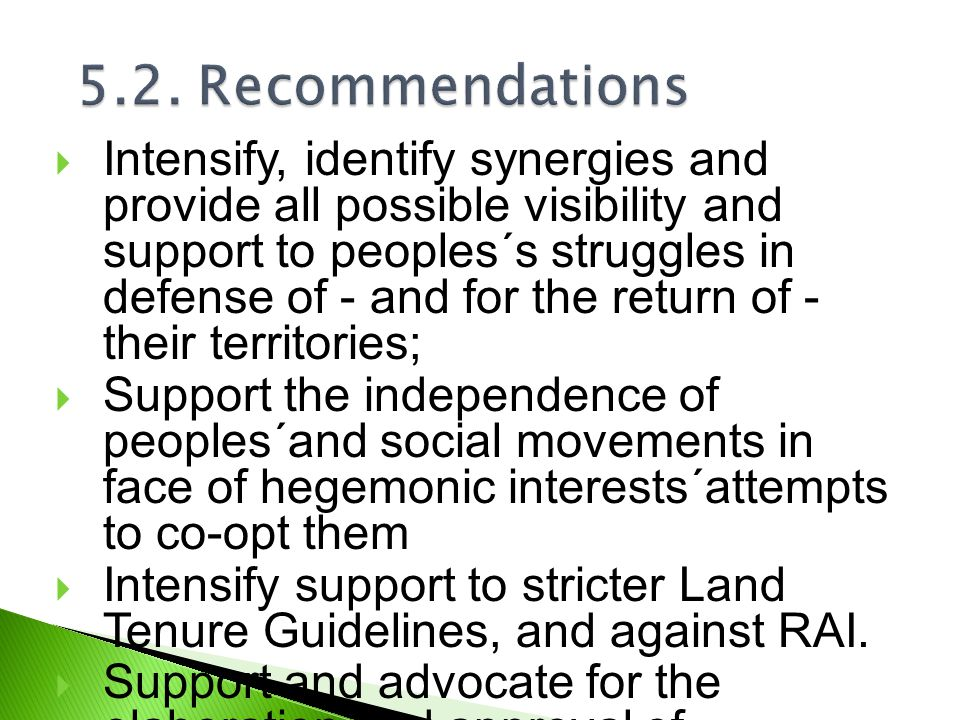  Intensify, identify synergies and provide all possible visibility and support to peoples´s struggles in defense of - and for the return of - their territories;  Support the independence of peoples´and social movements in face of hegemonic interests´attempts to co-opt them  Intensify support to stricter Land Tenure Guidelines, and against RAI.