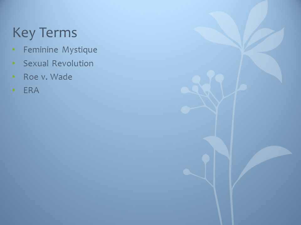 Key Terms Feminine Mystique Sexual Revolution Roe v. Wade ERA