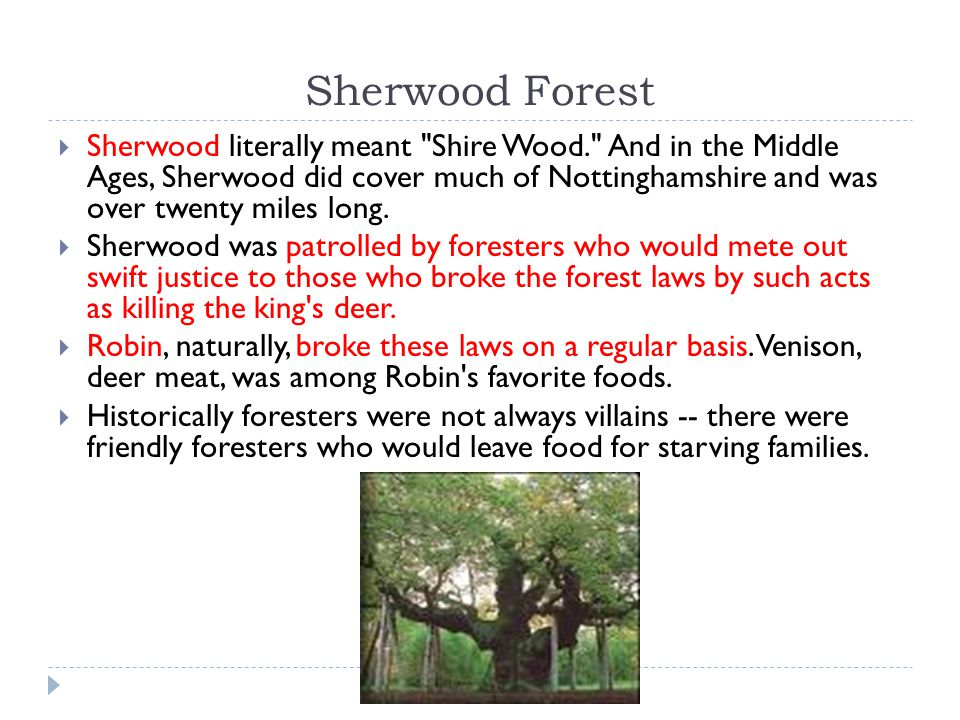 Sherwood Forest  Sherwood literally meant Shire Wood. And in the Middle Ages, Sherwood did cover much of Nottinghamshire and was over twenty miles long.