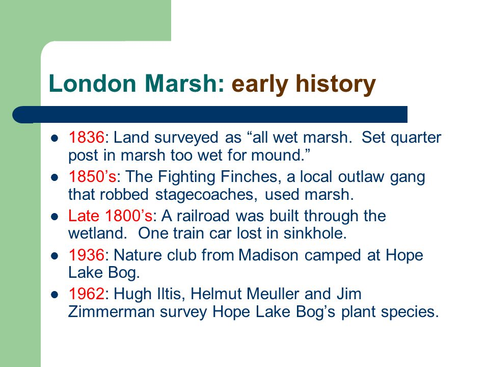 "London Marsh: early history 1836: Land surveyed as ""all wet marsh. Set quarter post in marsh too wet for mound."" 1850's: The Fighting Finches, a local"