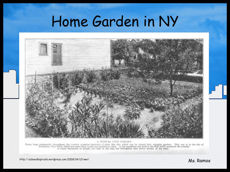 Home Garden in NY http://sidewalksprouts.wordpress.com/2008/04/13/wwi/ Ms. Ramos