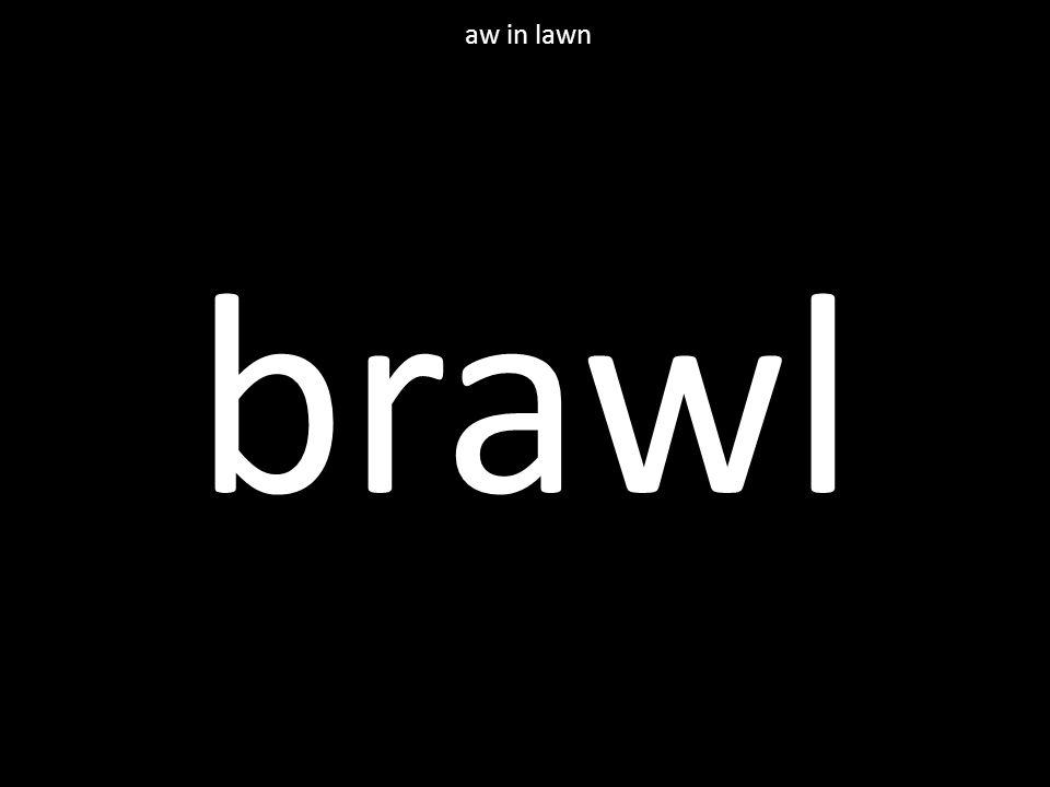 brawl aw in lawn