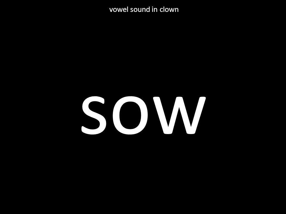sow vowel sound in clown