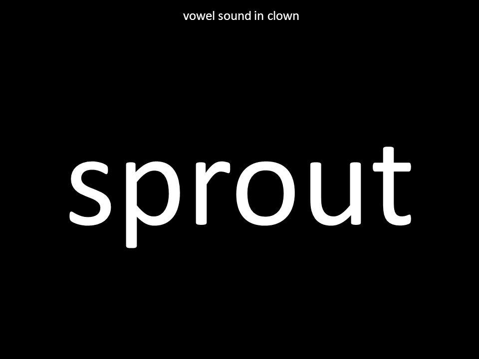 sprout vowel sound in clown