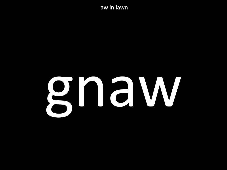 gnaw aw in lawn