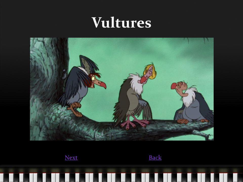 Vultures NextBack