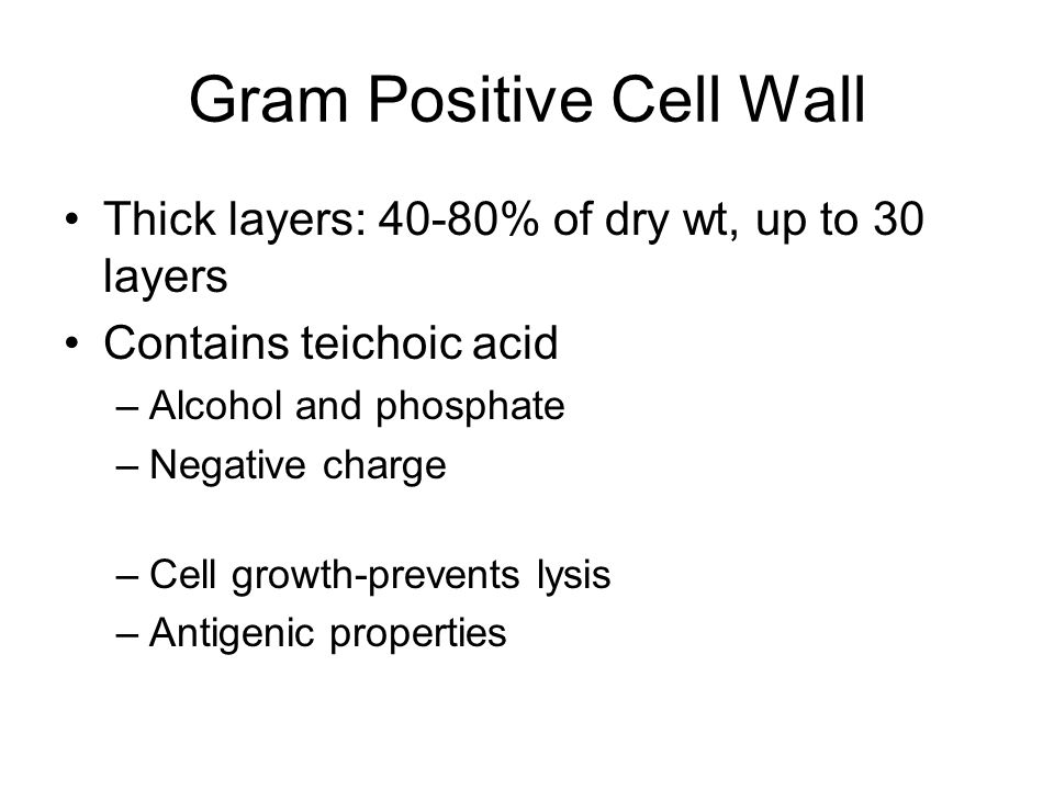Gram Positive Cell Wall Thick layers: 40-80% of dry wt, up to 30 layers Contains teichoic acid –Alcohol and phosphate –Negative charge –Cell growth-prevents lysis –Antigenic properties