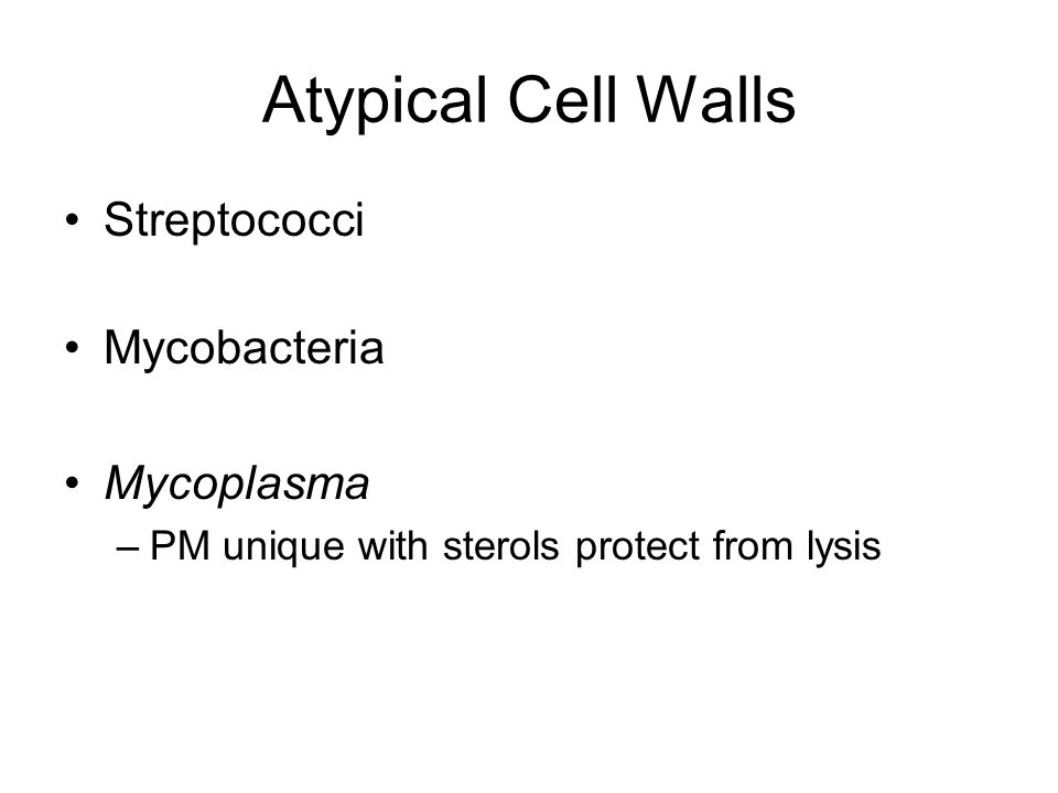 Atypical Cell Walls Streptococci Mycobacteria Mycoplasma –PM unique with sterols protect from lysis