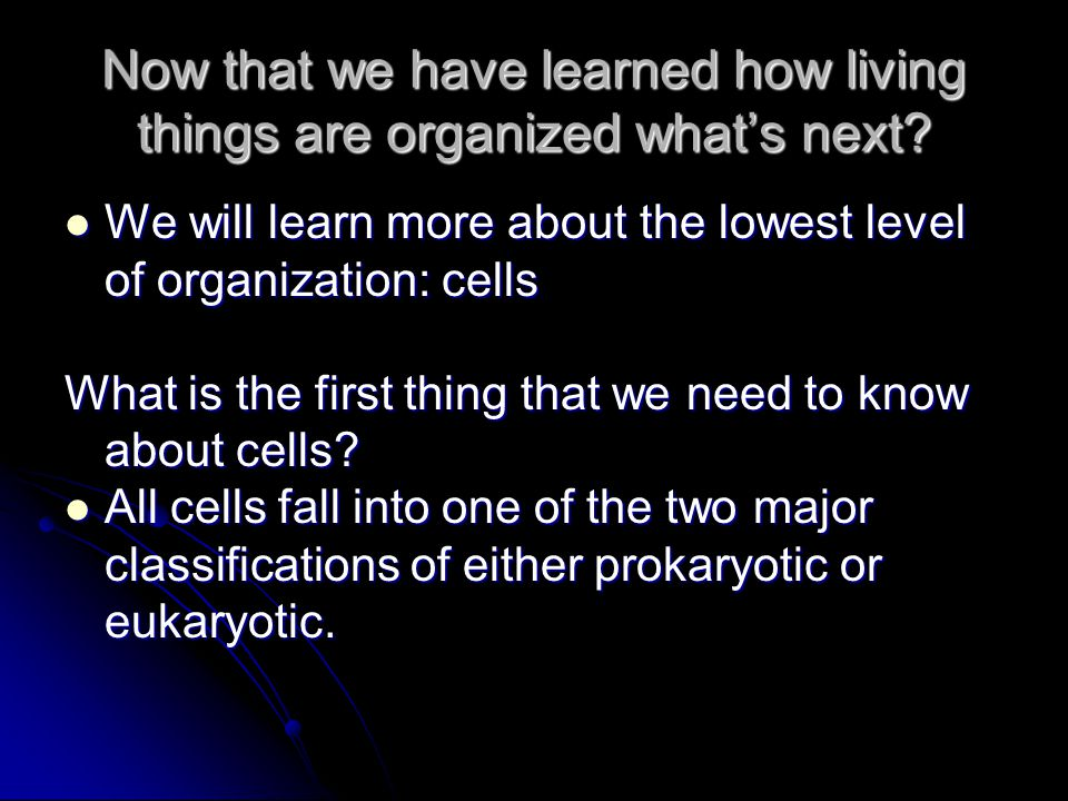 Now that we have learned how living things are organized what's next.
