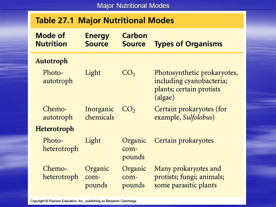 Major Nutritional Modes
