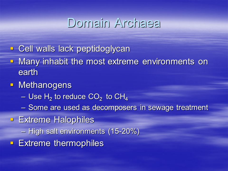 Domain Archaea  Cell walls lack peptidoglycan  Many inhabit the most extreme environments on earth  Methanogens –Use H 2 to reduce CO 2 to CH 4 –Some are used as decomposers in sewage treatment  Extreme Halophiles –High salt environments (15-20%)  Extreme thermophiles