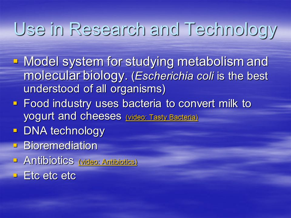 Use in Research and Technology  Model system for studying metabolism and molecular biology.