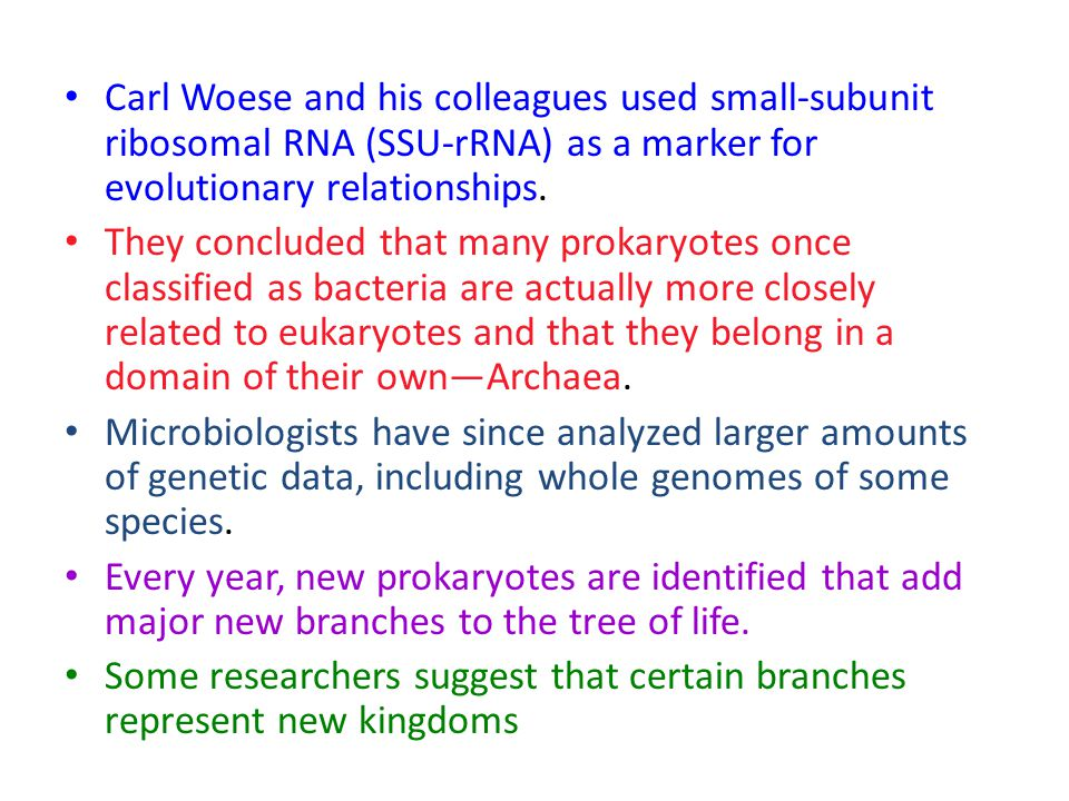 Carl Woese and his colleagues used small-subunit ribosomal RNA (SSU-rRNA) as a marker for evolutionary relationships. They concluded that many prokary