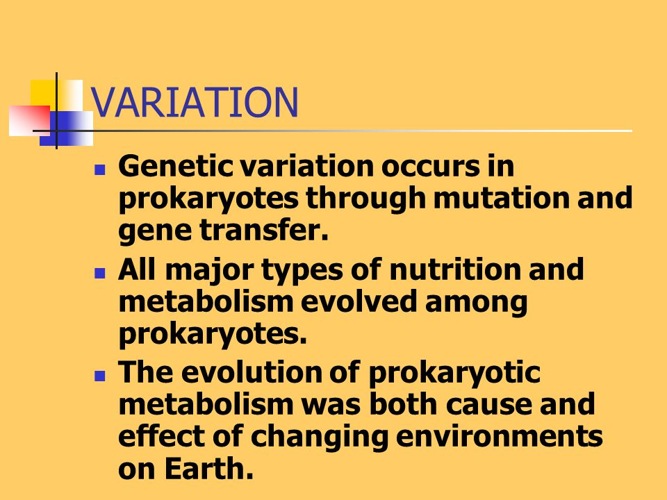 VARIATION Genetic variation occurs in prokaryotes through mutation and gene transfer. All major types of nutrition and metabolism evolved among prokar