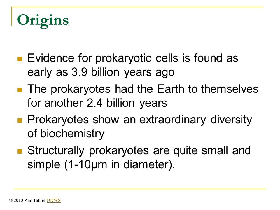 Origins Evidence for prokaryotic cells is found as early as 3.9 billion years ago The prokaryotes had the Earth to themselves for another 2.4 billion