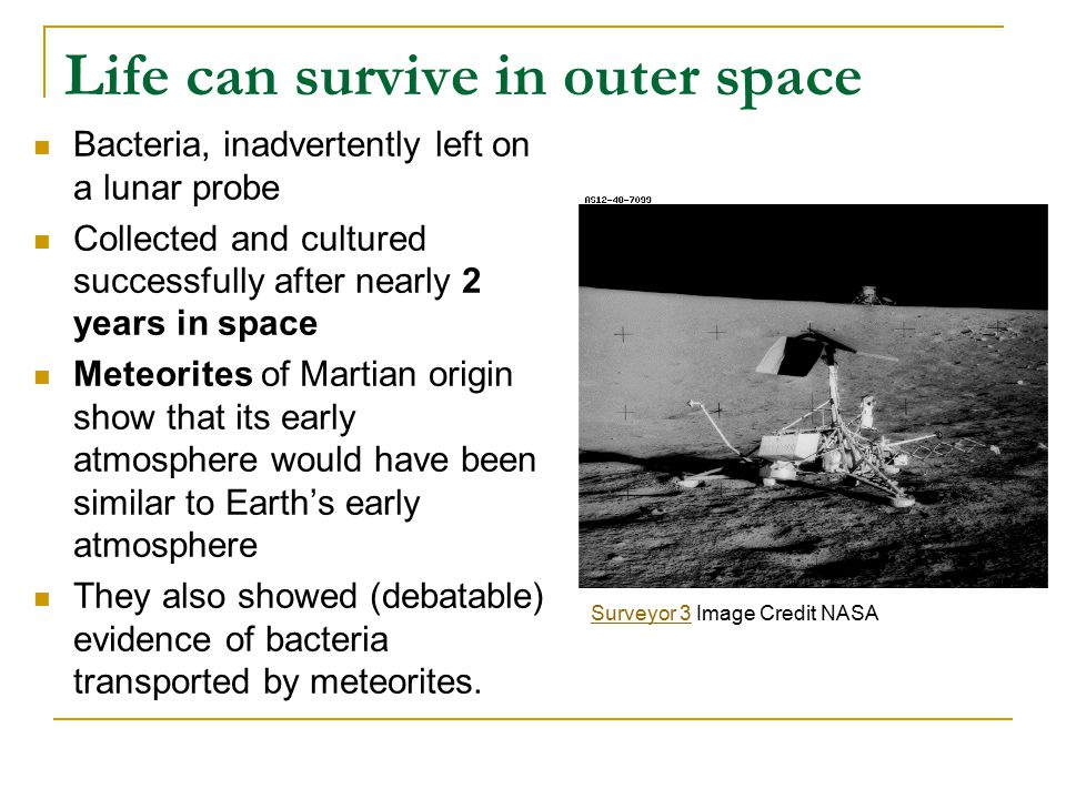 Life can survive in outer space Bacteria, inadvertently left on a lunar probe Collected and cultured successfully after nearly 2 years in space Meteor