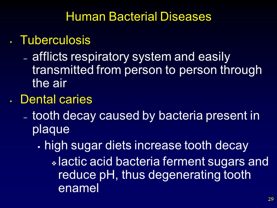 29 Human Bacterial Diseases Tuberculosis – afflicts respiratory system and easily transmitted from person to person through the air Dental caries – to