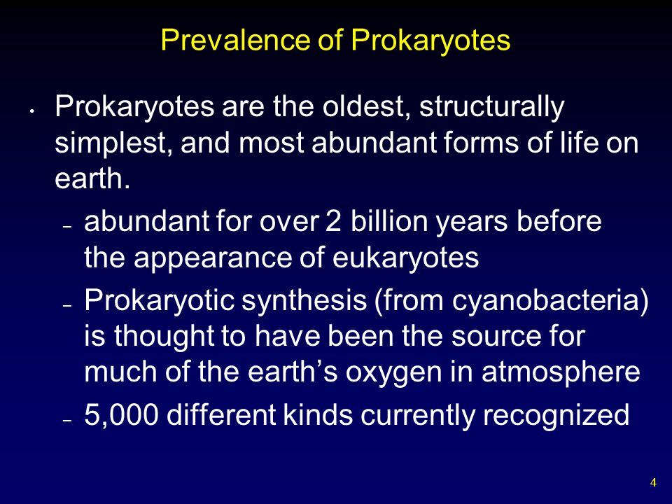 4 Prevalence of Prokaryotes Prokaryotes are the oldest, structurally simplest, and most abundant forms of life on earth. – abundant for over 2 billion