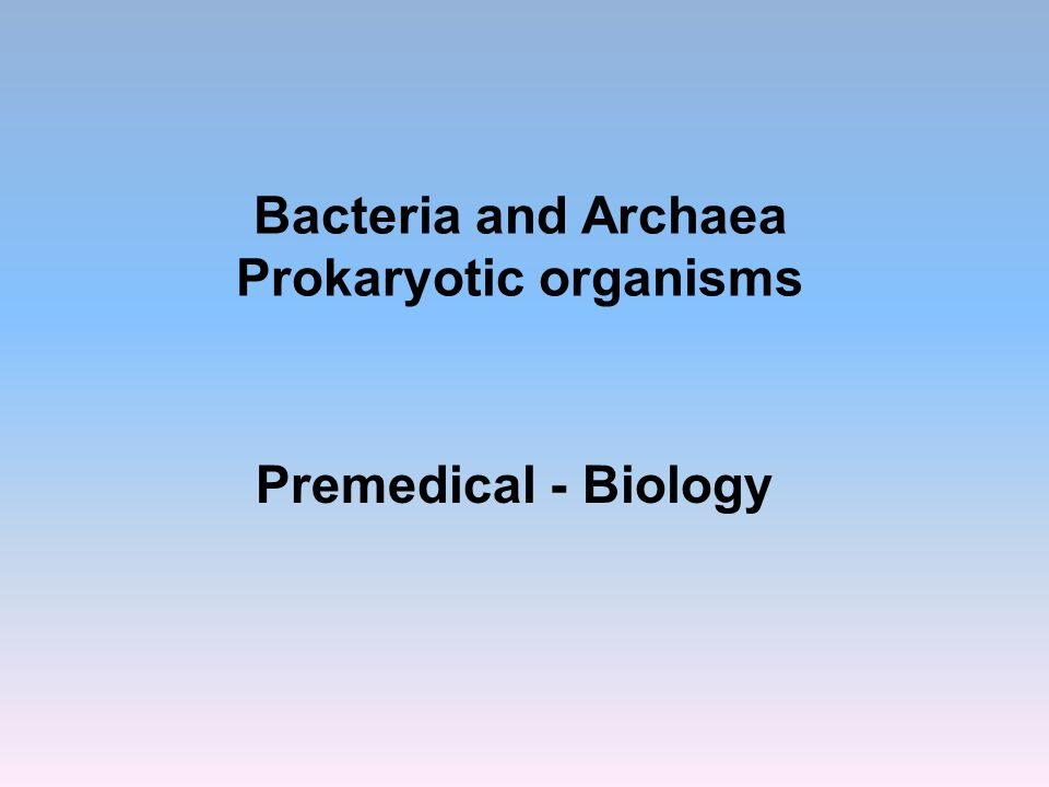 Bacteria and Archaea Prokaryotic organisms Premedical - Biology
