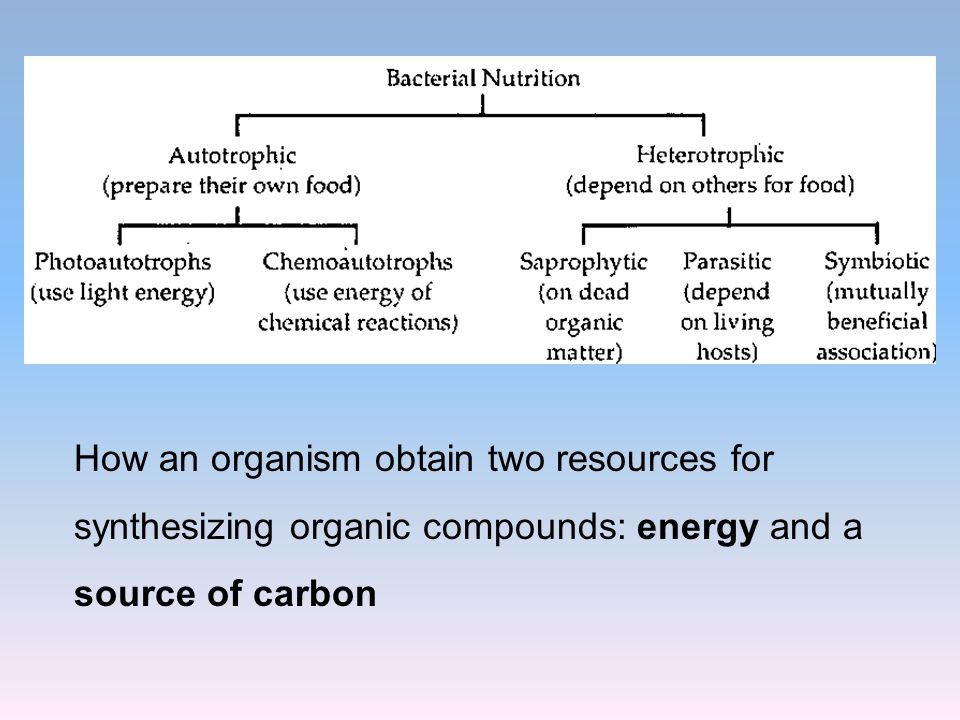 How an organism obtain two resources for synthesizing organic compounds: energy and a source of carbon