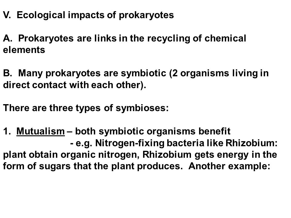 V. Ecological impacts of prokaryotes A.