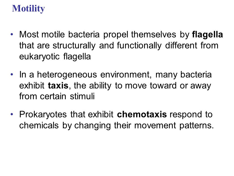 Motility Most motile bacteria propel themselves by flagella that are structurally and functionally different from eukaryotic flagella In a heterogeneous environment, many bacteria exhibit taxis, the ability to move toward or away from certain stimuli Prokaryotes that exhibit chemotaxis respond to chemicals by changing their movement patterns.