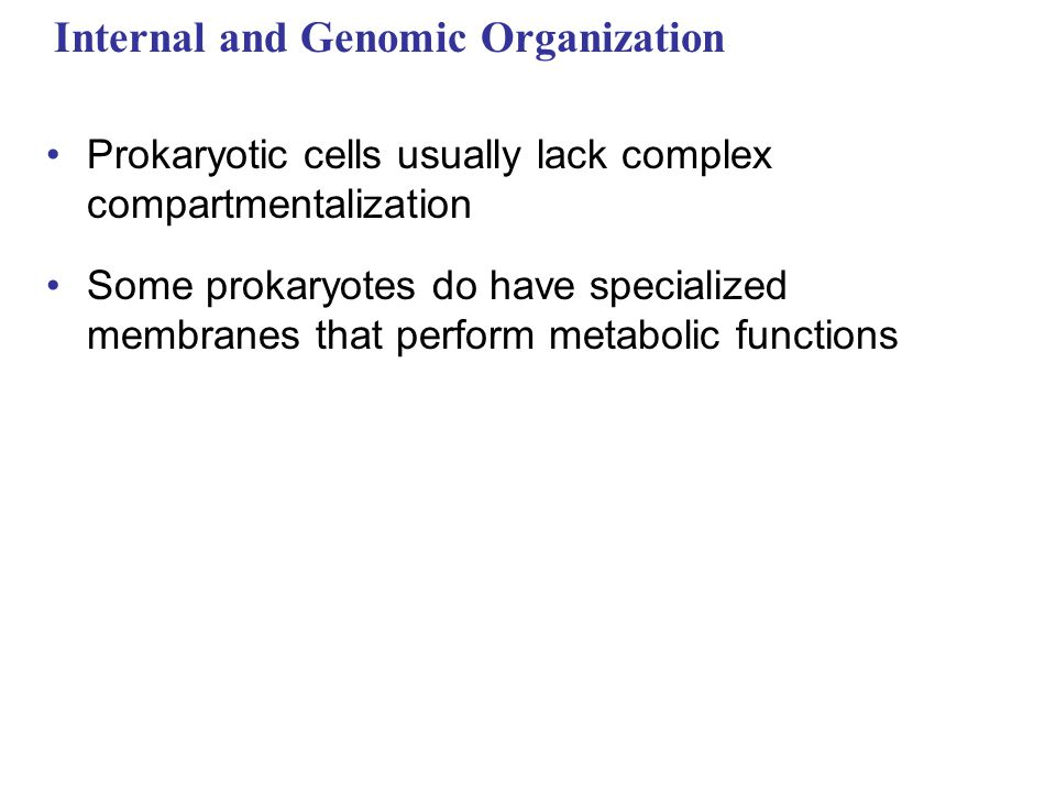 Internal and Genomic Organization Prokaryotic cells usually lack complex compartmentalization Some prokaryotes do have specialized membranes that perform metabolic functions