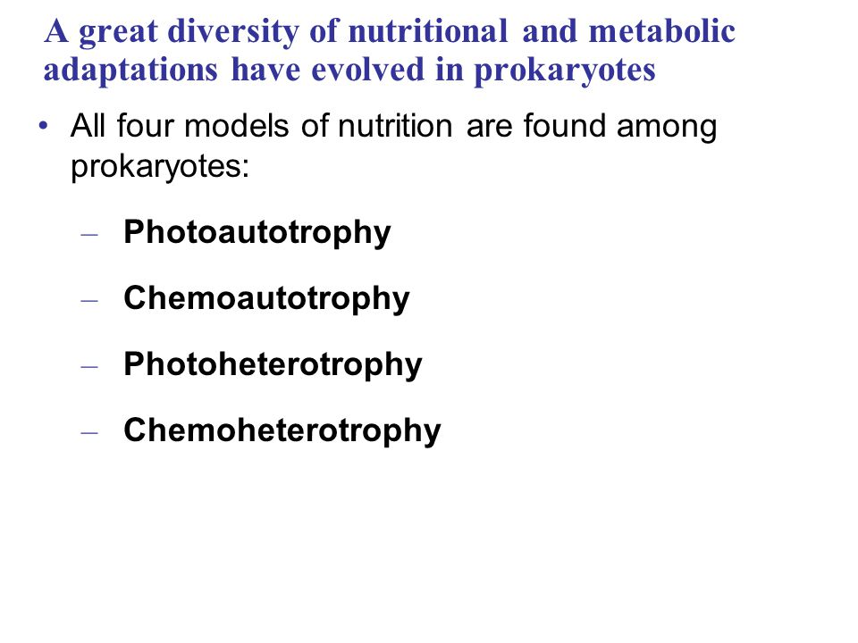 A great diversity of nutritional and metabolic adaptations have evolved in prokaryotes All four models of nutrition are found among prokaryotes: – Photoautotrophy – Chemoautotrophy – Photoheterotrophy – Chemoheterotrophy