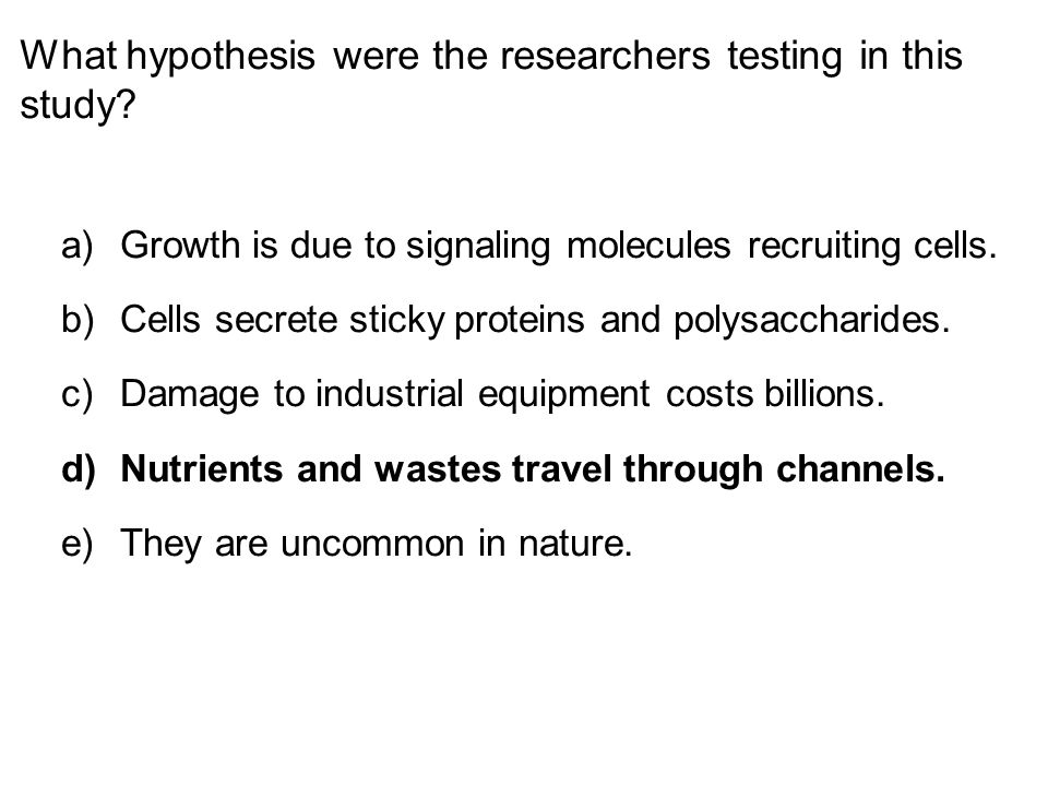 What hypothesis were the researchers testing in this study.