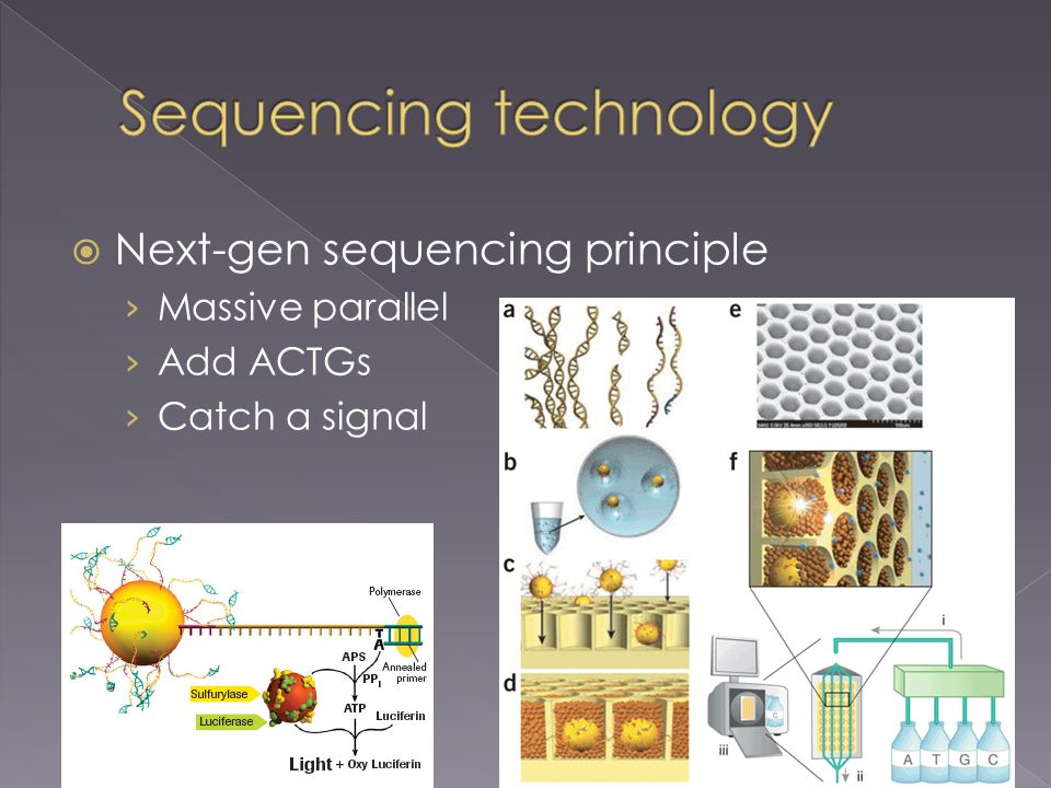  Next-gen sequencing principle › Massive parallel › Add ACTGs › Catch a signal