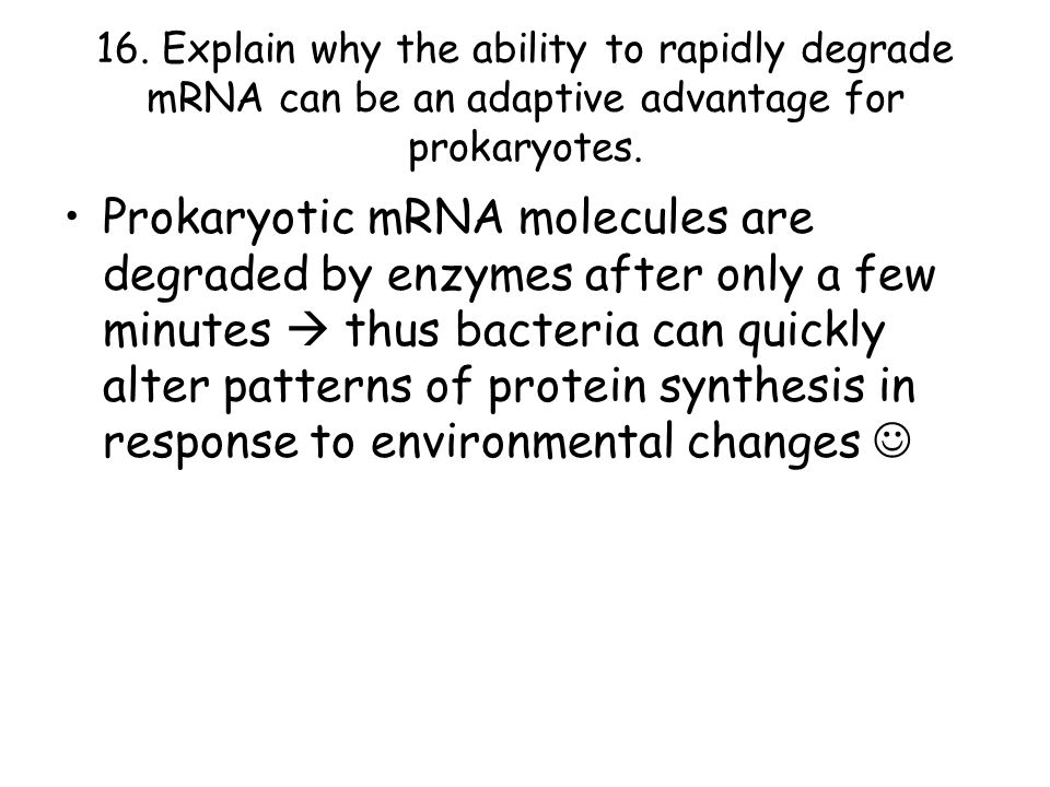 16. Explain why the ability to rapidly degrade mRNA can be an adaptive advantage for prokaryotes.